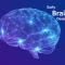 หลากหลายวิธีพัฒนาสมองเด็ก ตั้งแต่แรกเกิดถึง 6 ขวบ ให้ฉลาดสมวัย